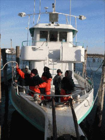 Montauk cod fishing update for Viking fishing report montauk